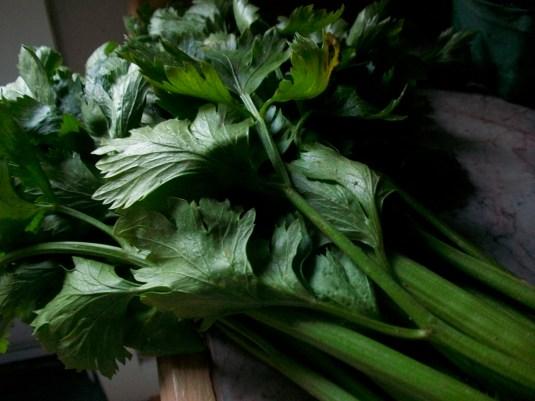 organic celery